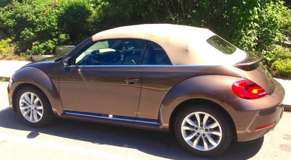 2013 volkswagon beetle luxury car bestride