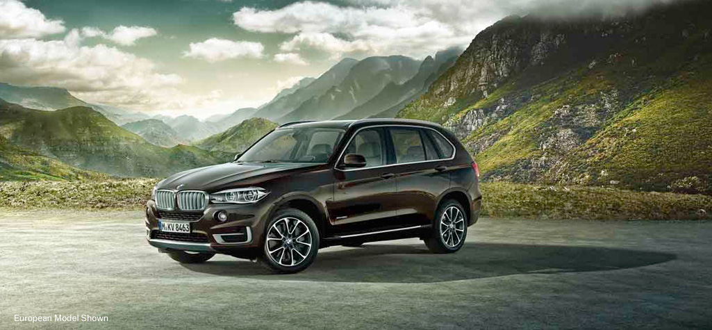 review 2014 bmw x5 xdrive35d diesel makes it better. Black Bedroom Furniture Sets. Home Design Ideas