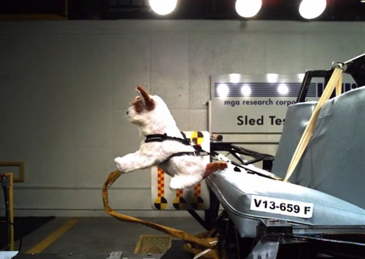 Pet Crash Test Results - How Subaru Helps Keep Our Furry ...