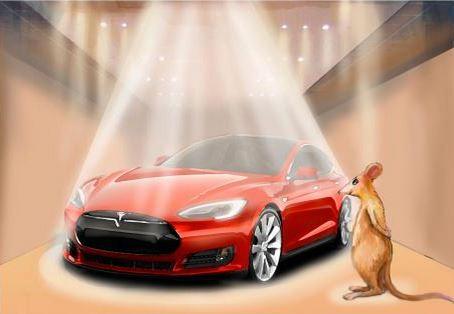 Tesla mouse book